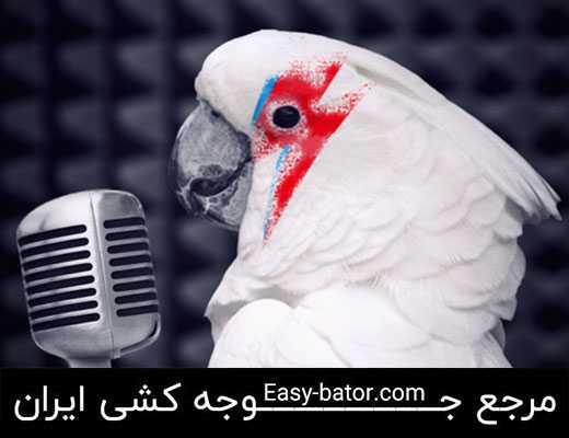 سخنگو کردن طوطی